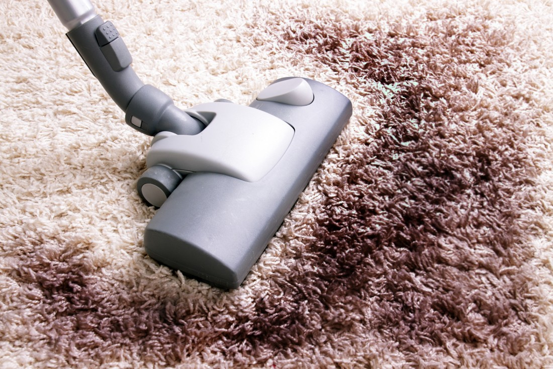 Professional Carpet Cleaners Near Everett WA | Affordable Joe's - 153357998