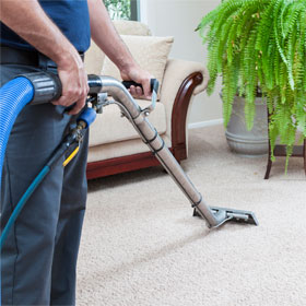 Professional Carpet Cleaners Near Everett WA | Affordable Joe's - carpet-cleaning